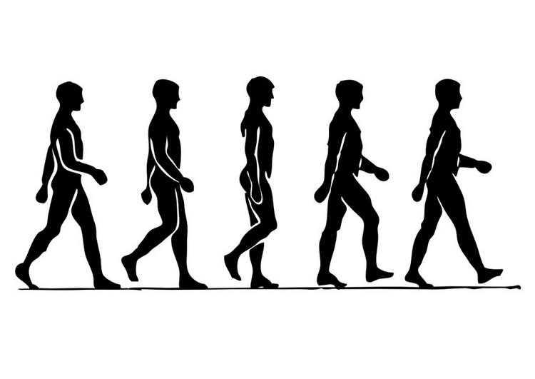 perder peso caminando